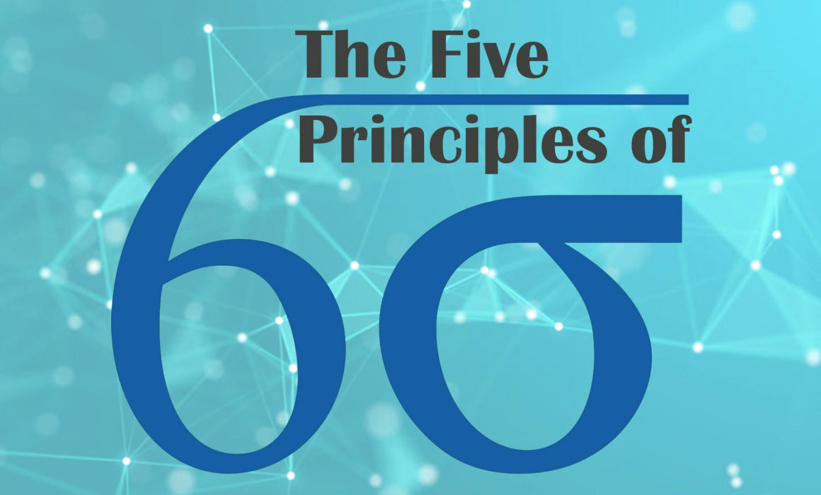Principles of Lean Six Sigma-Maximum Potential